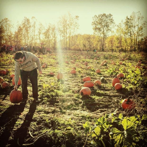 Dave pumpkin.jpg